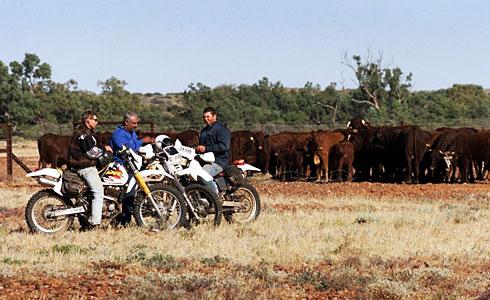 中資買澳牧場 4農家聯手阻擋