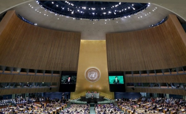 聯合國大會 14友邦為台發聲