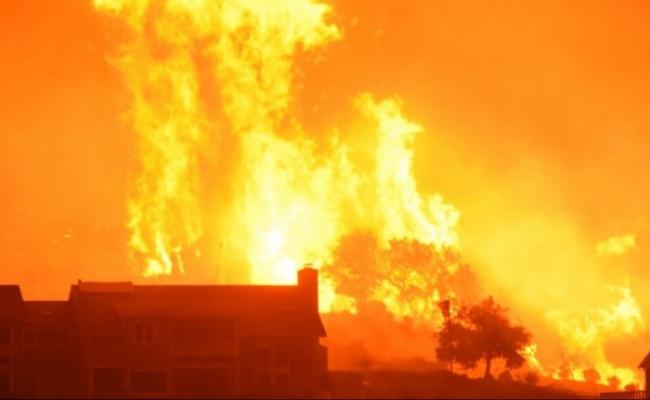 加州野火燒掉3.4個北市 歐普拉家也遭殃