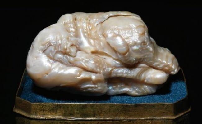 俄女王藏物 世界最大淡水珍珠將拍賣