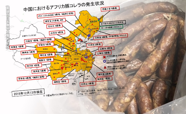 台灣沒被劃入!日製中國非洲豬瘟地圖