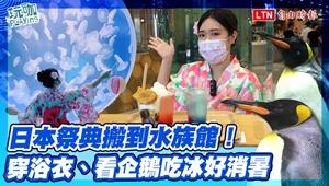 穿浴衣逛水族館、看企鵝吃冰!夏日新玩法秒飛日本祭典