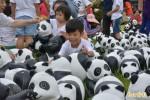 提升保育意識 八百隻紙熊貓到憲明國小