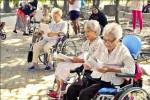 現代老萊子 打造「輪椅幼兒園」