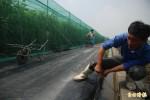 鳳凰展翅 高鐵籲農民做好溫室設施固定