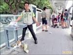 清潔人力不足 BRT小站髒兮兮