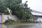 屏東單日雨量破700毫米 氣象局再上修預測雨量