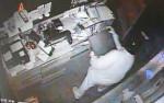 颱風夜偷大里2餐廳 慣竊19小時落網