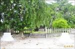 明年逢百歲 鳳林重整林田神社