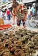 中國認證大閘蟹含禁藥 50噸恐下肚
