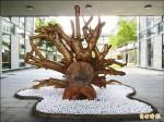 宜大80歲校樹枯 變身裝置藝術