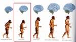 發現最古老人類DNA 探索人類殖民地球歷史