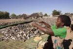 中國不夠看! 馬拉威消費成長全球之冠