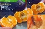高蛋白質? 英男吃橘赫見幼蟲和蟲卵