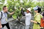 社區環保農園 志工齊力打造
