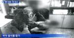南韓版洪仲丘案 主犯被判刑45年