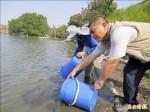 台南魚塭停養沒補助 漁民放養魚苗抗議
