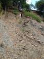台、法研究 地表侵蝕讓大地震提早發生