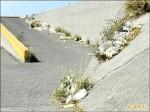 蚵棚保麗龍上岸 養殖戶憂阻排水