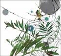 平實細膩人間事 - 第十屆林榮三文學獎.散文獎決審會議紀錄 2之2