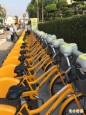 屏東P bike選後啟用 逾750人完成記名登錄