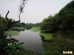 高雄11月溫度高、雨量少 鳥松濕地缺水