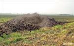 廢棄物變肥料 台糖沃土首賣