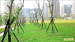 台中市政公園停車場啟用 今年停免錢