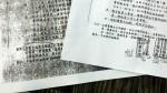 蔡正元指柯P民進黨 段宜康出示文件打臉