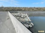 台西新興養殖專業區 水門調節池大量垃圾堆積