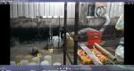 警搗破隱身廢棄豬舍的製毒工廠
