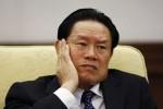 中國高官再爆性醜聞 愛找金絲貓玩冰火九重天