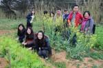 園藝療癒…台大園藝所計畫打造「無障礙農場」