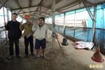 政府禁止繫留雞隻 理貨場業者抗議