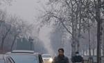 赴中國旅遊 加國女染H7N9