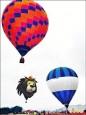 走馬瀨熱氣球升空 一覽農場美景