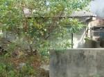 金門300公頃佈雷區土地 修法還地於民
