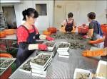 白蝦、文蛤、台灣鯛 量減價漲
