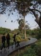 南市首座荒野公園 巴克禮公園啟用