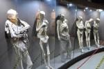 慎入! 墨西哥某博物館 展超過100具「屍體」