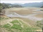 水位20年新低 明德水庫上游變草原