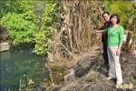 大雨必淹 綠川下游護岸多年未修