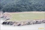 《枯水期景點》石門水庫夢幻草原 綠草僅4成