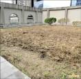 閒置空地闢農園 新北市府部分空間做示範