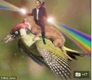 巴斯光年騎啄木鳥?「童話般畫面」慘被惡搞