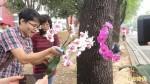 屏科大90週年校慶 師生種下800株蝴蝶蘭