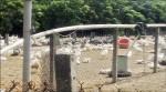 東勢鵝場染「禽」 3千多隻全撲殺