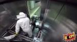 養蜂人在電梯打翻蜜蜂盒 乘客失控超爆笑