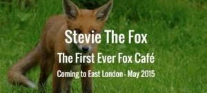 倫敦5月推「狐狸咖啡廳」 與小狐狸共享閒暇
