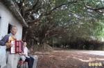 一起來當守護天使 新營長勝營區護樹連署